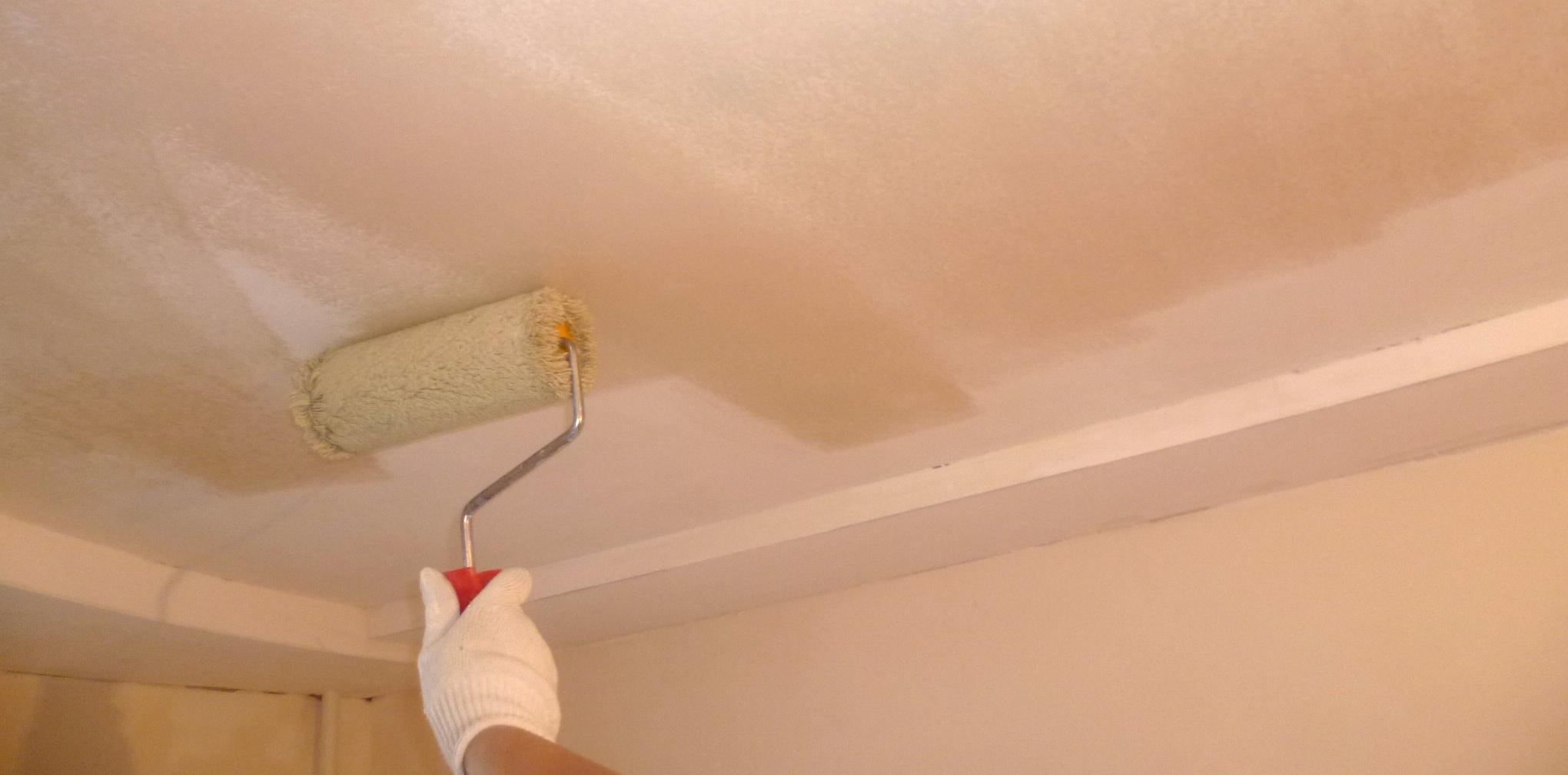 Грунтовка для потолка – выбор и советы по нанесению